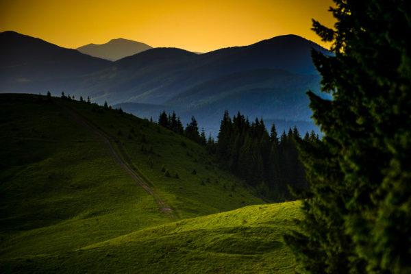 fotoshkola_shevelev (6)