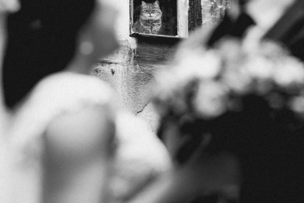 Alexander-Kochegura-Photography-4